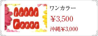 ワンカラー\3500沖縄\3000